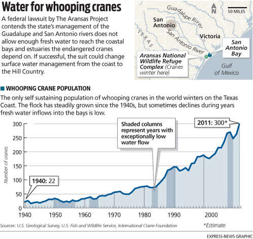 Water for whooping cranes A federal lawsuit by The Aransas Project contends the state's management of the Guadalupe and San Antonio rivers does not allow enough fresh water to reach the coastal bays and estuaries the endangered cranes depend on. If successful, the suit could change surface water management from the coast to the Hill Country. Photo: Mike Fisher