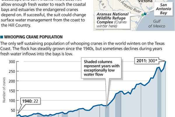 Water for whooping cranes A federal lawsuit by The Aransas Project contends the state's management of the Guadalupe and San Antonio rivers does not allow enough fresh water to reach the coastal bays and estuaries the endangered cranes depend on. If successful, the suit could change surface water management from the coast to the Hill Country.