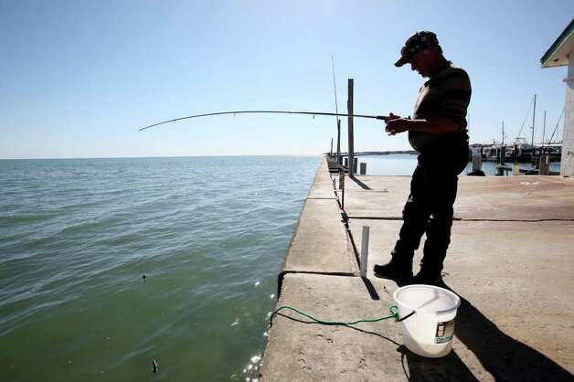 Frank Pedigo prepares to cast his line at the marina in Fulton, Texas, Tuesday, Nov. 29, 2011. Area folks are suing the state for control of water from the rivers that empty into the refuges. With the ongoing drought and low river water flow, high salinity in the waters of the bay caused a bloom of red tide that lead to the closing of the oyster season and the decline in blue crabs. The crabs are the main source of food for the cranes. Pedigo says his fishes almost every day and that his success has dropped off since the arrival of Red Tide. Photo: JERRY LARA, Jerry Lara/glara@express-news.net / SAN ANTONIO EXPRESS-NEWS
