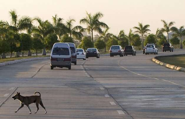 A dog crosses a road as U.S. Secretary of State Hillary Rodham Clinton's motorcade drives through Naypyidaw, Myanmar, Wednesday, Nov. 30, 2011. Clinton arrived Wednesday in the capital of Naypyidaw on the first trip by a U.S. secretary of state to Myanmar in more than 50 years. (AP Photo/Saul Loeb, Pool) Photo: Saul Loeb, AP