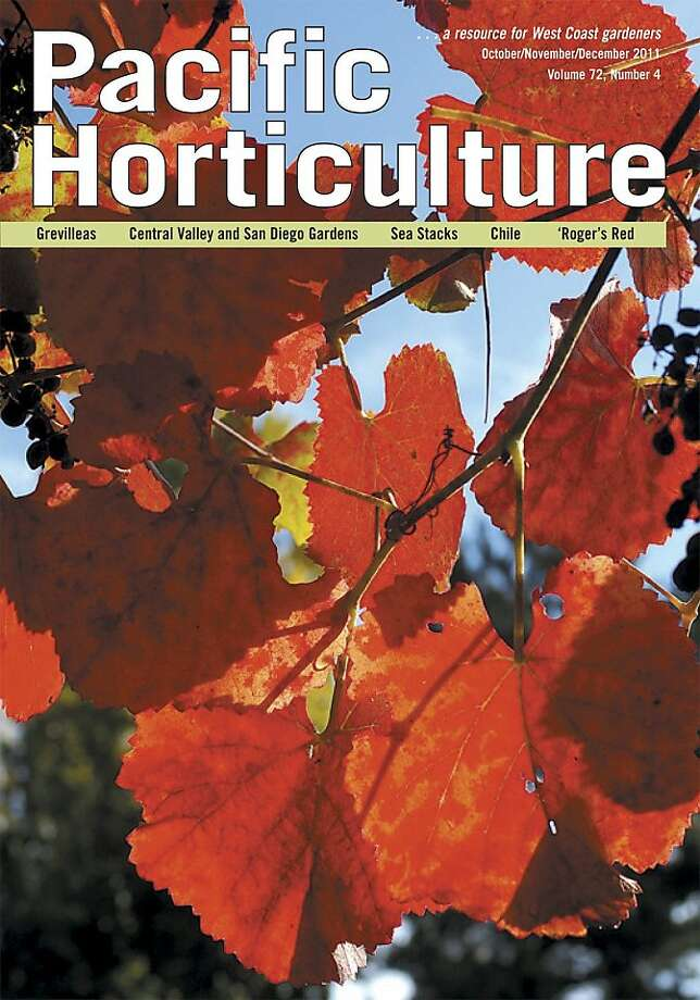 Book cover of Pacific Horticulture Photo: Gayton Design, GAYTON DESIGN