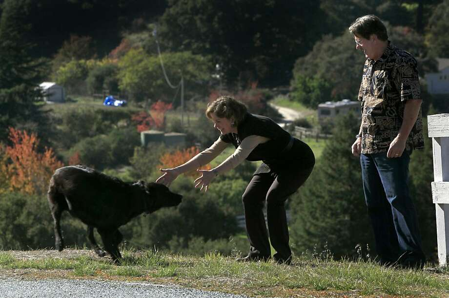 Dan and Donna Lee, owners and winemakers of Morgan Winery, walk with their dog Hudson on a road near their home in the hills above Salinas, Calif. on Wednesday, Nov. 16, 2011. Photo: Paul Chinn, The Chronicle