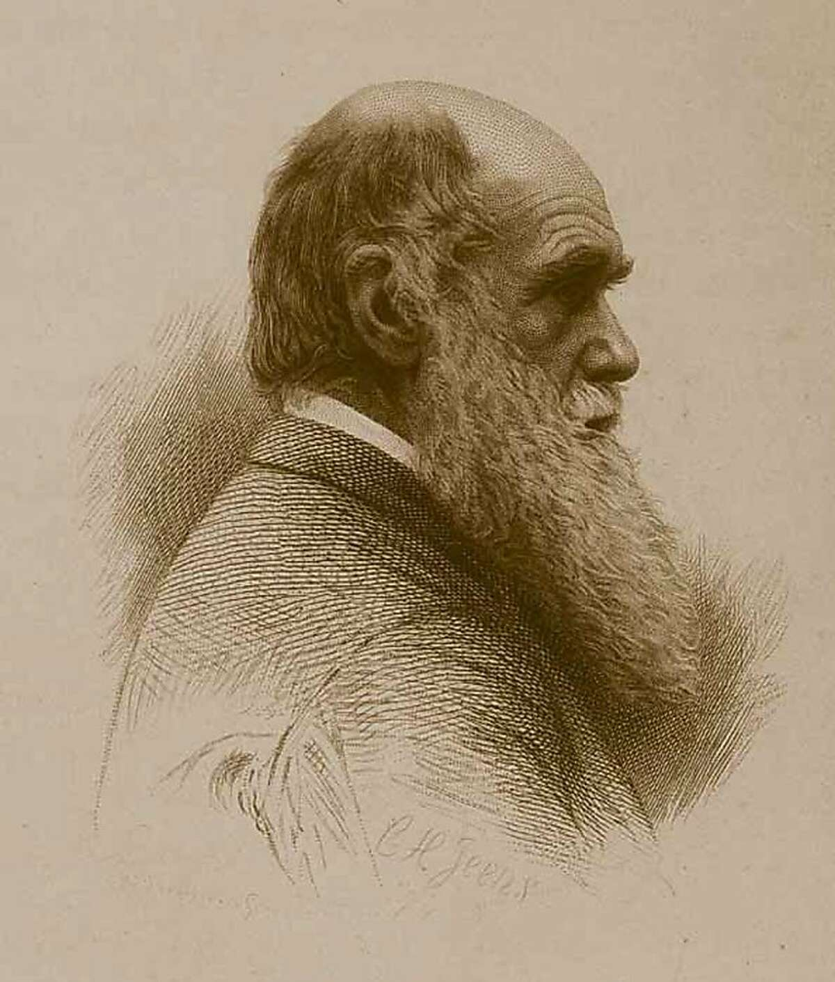 (NYT26) UNDATED -- Feb. 9, 2009 -- SCI-DARWIN-MISUNDERSTOOD-4 --- An engraving of Charles Darwin by C.H. Jeens. (Courtesy of Luesther T. Mertz Library, The New York Botanical Garden/The New York Times) *Only for use with NYT stories from Feb. 10 issue of Science Times section on Darwin. All other use prohibited. Ran on: 02-14-2009 Charles Darwin, C.H. Jeens engraving Ran on: 02-14-2009 Charles Darwin, C.H. Jeens engraving Ran on: 02-14-2009 Charles Darwin, C.H. Jeens engraving Ran on: 05-11-2009 Ran on: 05-11-2009 Ran on: 05-11-2009 Ran on: 06-22-2009 Ran on: 06-22-2009 Ran on: 06-22-2009 Ran on: 12-04-2011 Charles Darwin on the eye: organ of extreme perfection. Ran on: 12-04-2011 Charles Darwin on the eye: organ of extreme perfection. Ran on: 12-04-2011 Charles Darwin on the eye: organ of extreme perfection.