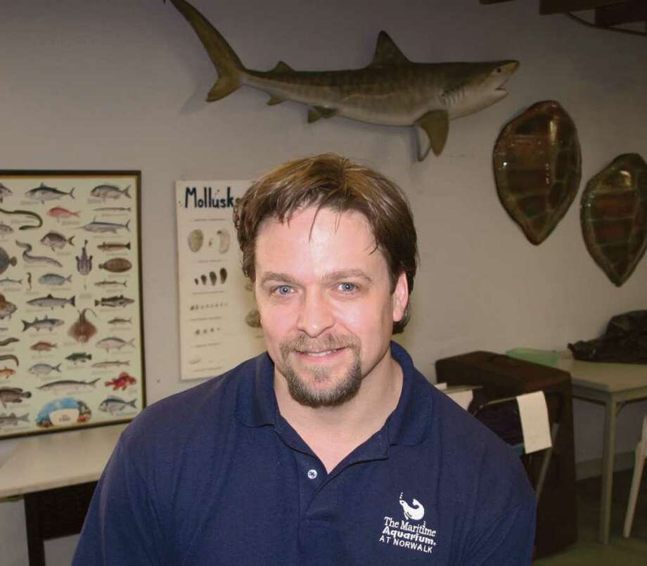 Jamie Alonzo has been named the new director of education at the Maritime Aquarium in Norwalk. Photo: Contributed Photo