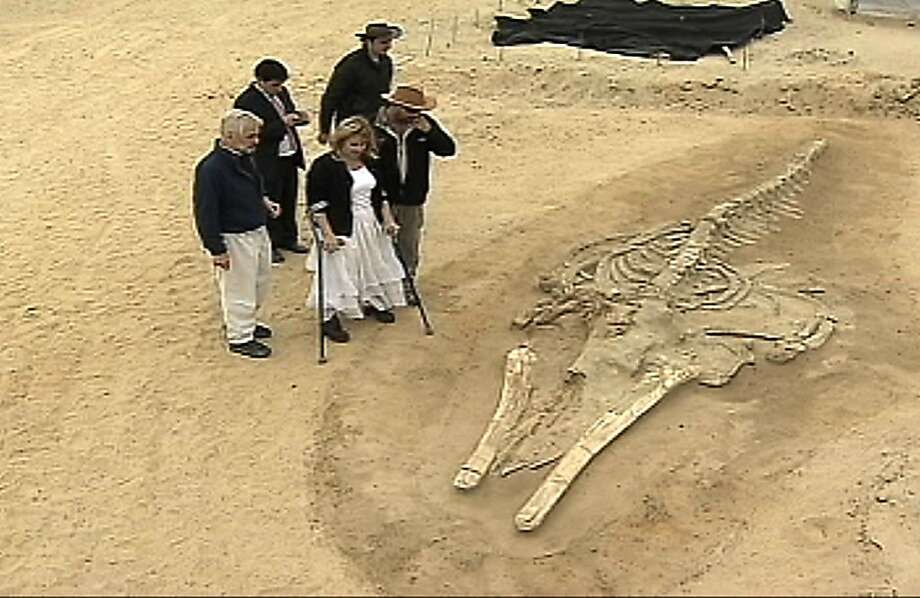 ADVANCE FOR USE SUNDAY, NOV. 20, 2011 AND THEREAFTER - In this image made from video taken on Nov 11, 2011, Minister of National Assets Catalina Parot, using crutches, looks at a prehistoric whale fossil unearthed in the Atacama desert near Copiapo, Chile. More than 2 million years ago, scores of whales congregating off the Pacific Coast of South America mysteriously met their end. Maybe they became disoriented and beached themselves. Maybe they were trapped in a lagoon by a landslide or a ferocious storm. Maybe they died there over a period of a few millennia. But somehow, they ended up right next to one another, many just several yards (meters) apart, entombed over the ages as the shallow sea floor was driven upward by geologic forces and transformed into the driest place on the planet. Today, the whales have emerged again atop a desert hill more than half a mile (a kilometer) from the surf, where researchers have begun to unearth one of the world's best-preserved graveyards of prehistoric whales. (AP Photo/Canal 24 Horas Video)  Ran on: 12-04-2011 In a video image, Chile Minister of National Assets Catalina Parot (in white) looks over a whale fossil. Photo: Canal 24 Horas Video, AP