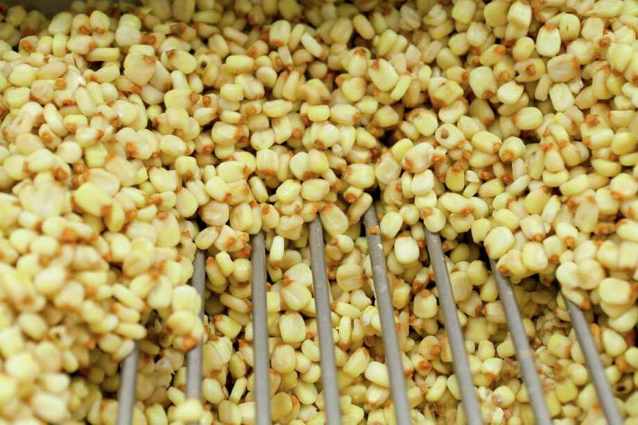Corn kernels make their way to the on-site silo.