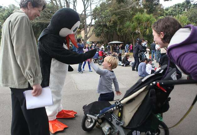 Adam Gelfand, 3, gives the penguin mascot a high-five before finding a place to watch the five new penguins waddle around their new home at the San Francisco Zoo on Saturday. Photo: Audrey Whitmeyer-Weathers, The Chronicle