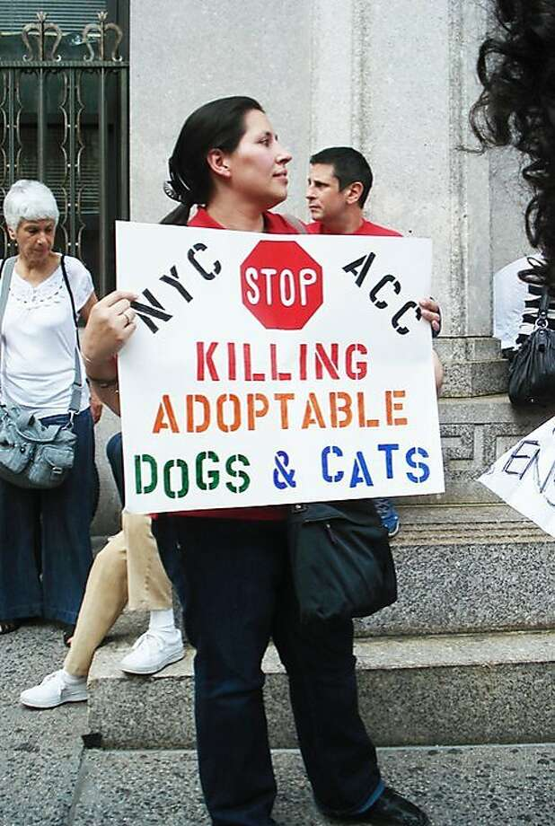 A protestor outside the June 21 meeting of the New York City Board of Health, which oversees the city's animal control department. Photo: Courtesy Of No Kill NYC