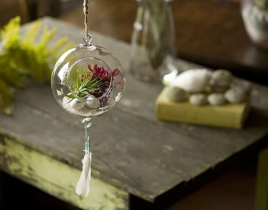 "Hanging terrarium. From ""Terrarium Craft: 50 Magical, Miniature Worlds,"" by Amy Bryant Aiello and Kate Bryant. Photo: Kate Baldwin"