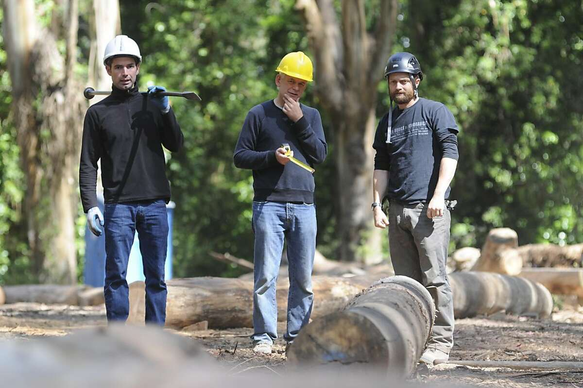 """Andy Goldsworthy (center) and crew members Jacob Ehrinberg (left, has worked with Goldsworthy 10 years) and Sam Clayton (worked with Goldsworthy 4 years) choose and organize eucalyptus logs for his current project. Goldsworthy is approaching completion of """"Wood Line"""", a landscape sculpture of eucalyptus logs that snakes around the Presidio. The project, which Goldsworthy considers a """"drawing"""" useing the logs, is planned out as an outline before the logs are chosen and fitted at the wood dump (pictured: also at the Presidio. Once fitted, the logs are brought and, individually placed, and made flush at the Presidio site."""
