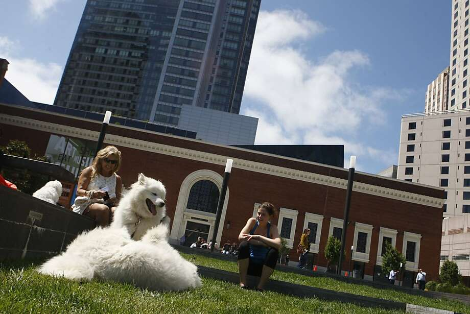 Dog owners Dana Watkins from Atlanta and Alison Doyle of San Francisco let their dogs play in an outdoor plaza on Mission Street across from the Yerba Buena Center in San Francisco Calif.,  on July 23, 2011. Photo: Audrey Whitmeyer-Weathers, The Chronicle