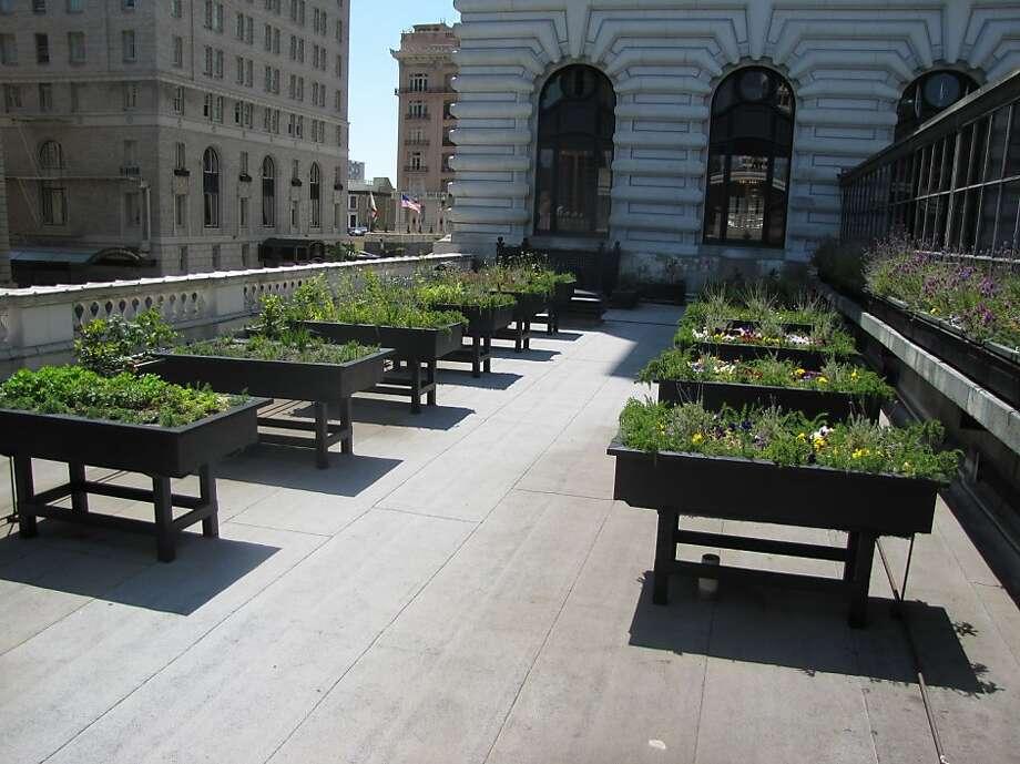 The Fairmont roof garden Photo: The Fairmont San Francisco