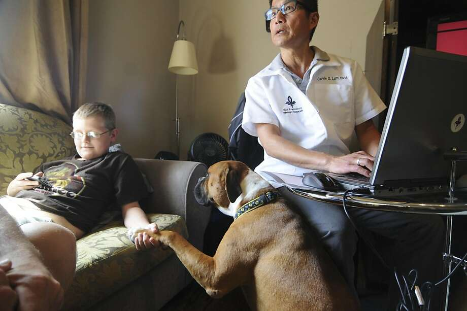 Dr. Calvin Lum makes a housecall on Tuesday, July 19, to the Steinhart Hotel and Apartments in San Francisco, to perform a first exam for Marcus Ross's recently rescued boxer, Miles, while Marcus's son David Ross (left), age 11, plays a videogame. Miles was adopted by Ross on Sunday, July 17, while he was in the city working on Billy Elliot (Ross normally lives in Las Vegas). Dr. Lum has also done housecalls for Ross's other boxer, Carly, who was adopted in 2007. Dr. Lum runs his practice, San Francisco Veterinarian Housecalls, out of his childhood home in San Francisco. Photo: Skyler Reid, Special To The Chronicle