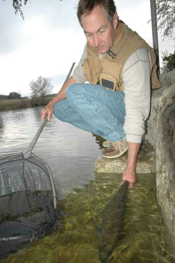 027-... Eric Carr releases a trophy rainbow trout into big pool in the Shonto's Fall Creek.