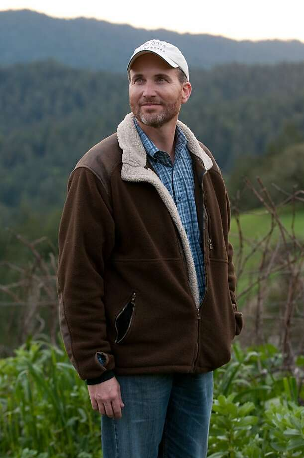 "Rhys Vineyards owner Kevin Harvey pauses in the ""Alpine Vineyard"" of his winery. Photo: Chad Ziemendorf, Special To The Chronicle"