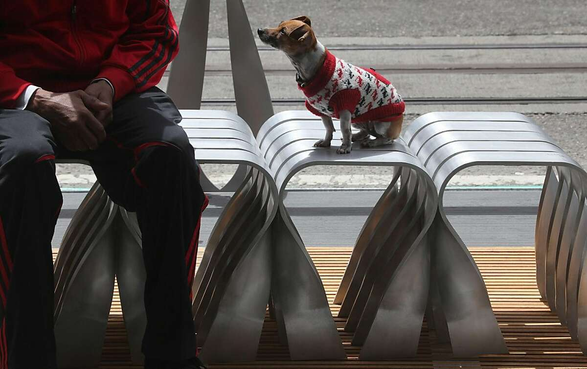 Jeffrey Jules (left) sitting next to Cleopatra (short legged jack russell) on a bench designed by Walter Hood for the two-block stretch of parklets on Powell Street between Ellis and Geary streets in San Francisco, Calif., on Tuesday, July 12, 2011, and will be ready for public use tomorrow.