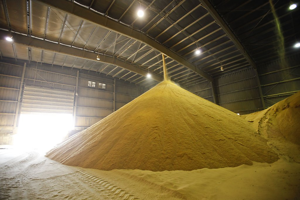 ethanol production research papers The ethanol enviorment a research paper subbmitted to mr jeff williams i have been aware of corn ethanol production in the united states for a long time.