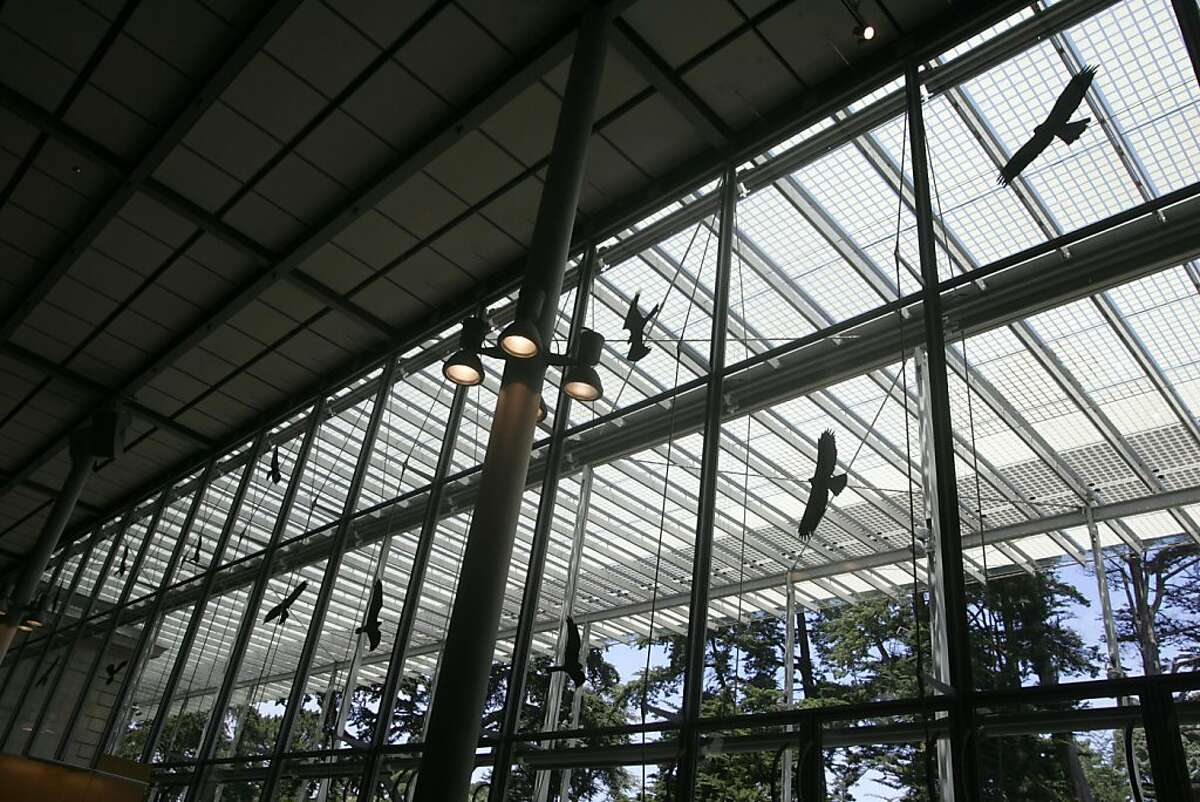 Stickers of silhouettes of birds of prey are on the windows of the East end of the California Academy of Sciences to keep birds from fatally flying into the glass during migratory season. The city is making efforts to plan for bird safety in new building construction.