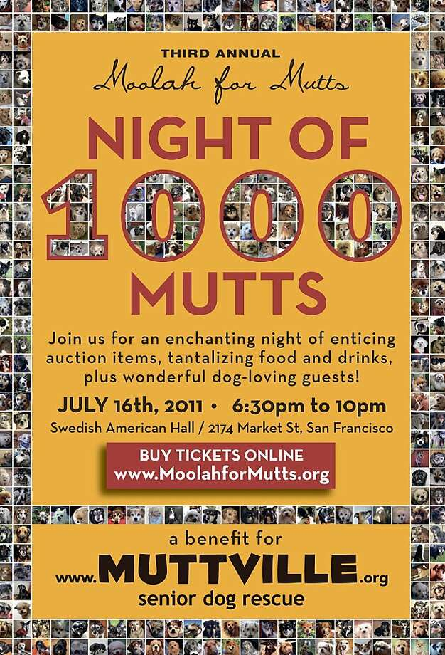'Third annual 'Moolah for Mutts' on July 16th, 2011. Starting at 6:30 pm - 10 pm at the Swedish American Hall, 2174 Market St., San Francisco A benefit for www.muttville.org Photo: Muttville.org