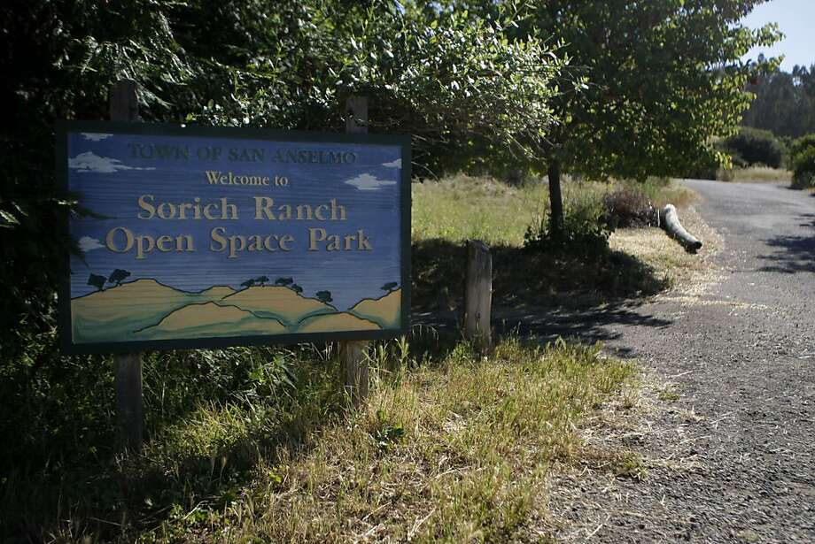 Sorich Ranch Park provides visitors and their dogs with hiking trails of various levels of difficulty in San Anselmo Calif.,  on July 1, 2011. Photo: Audrey Whitmeyer-Weathers, The Chronicle