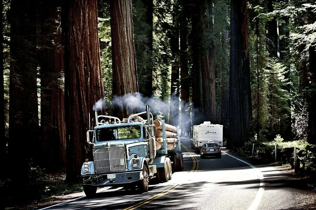 In this photo taken July 28, 2010, a truck carrying a load of lumber drives through a narrow stretch of Highway 101 through Richardson Grove State Park, Calif. Richardson Grove State Park is called the gateway to Humboldt County but officials and local businesses say this narrow roadway is actually a barrier to the region's economic growth. (AP Photo/The Sacramento Bee, Manny Crisostomo) MAGS OUT; TV OUT; MANDATORY CREDIT