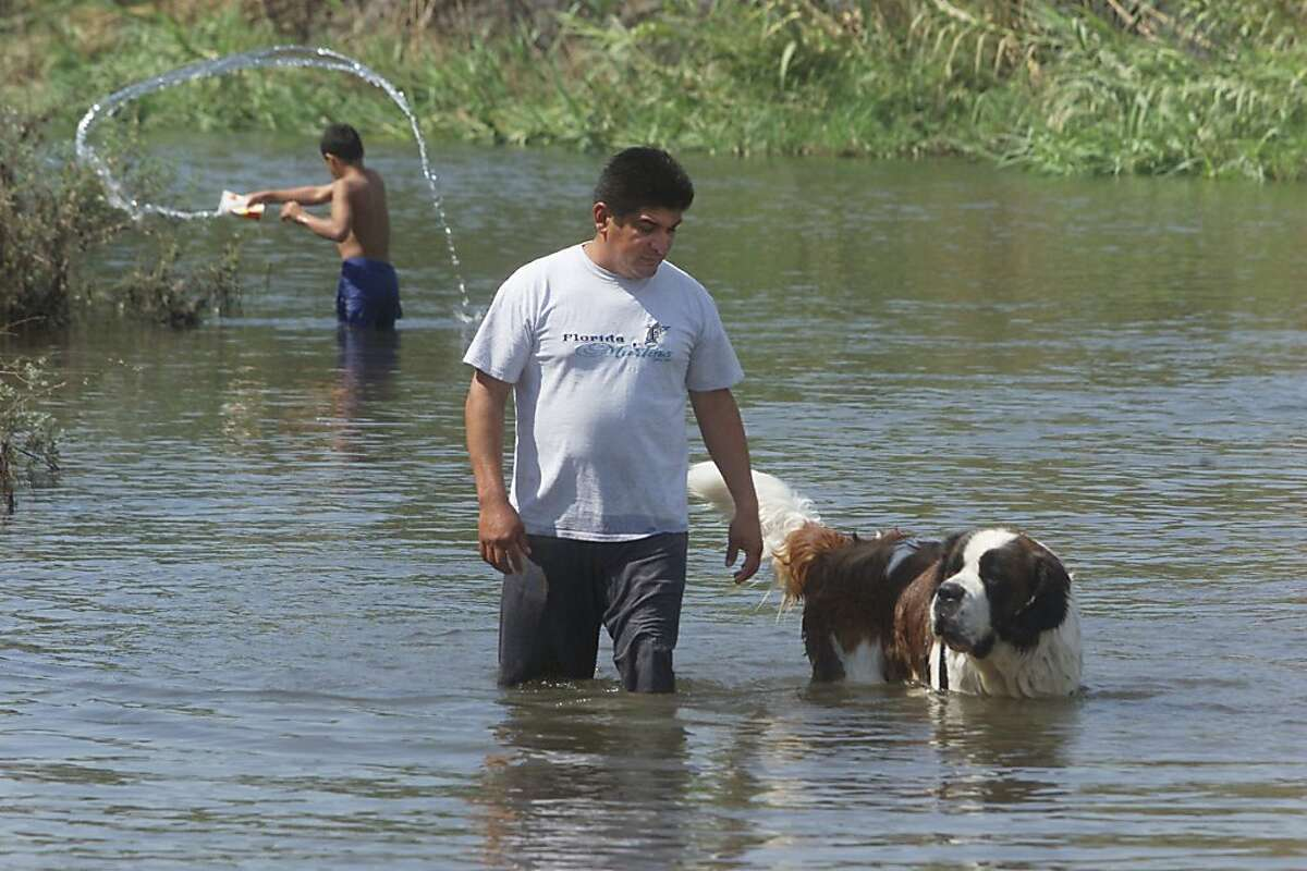Jaime Lopez of Fresno, Calif., takes his St. Bernard on a cool walk on the Kings River near Reedley, Calif., Sunday, Aug. 11, 2002. With temperatures in the triple digits, people were taking to the rivers in an effort to cool off. Lopez says when it gets really hot he has to think of ways to keep the dog cool.