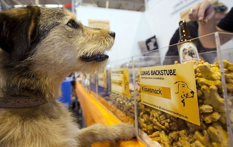 SFGate: Day in Pictures - SFGate