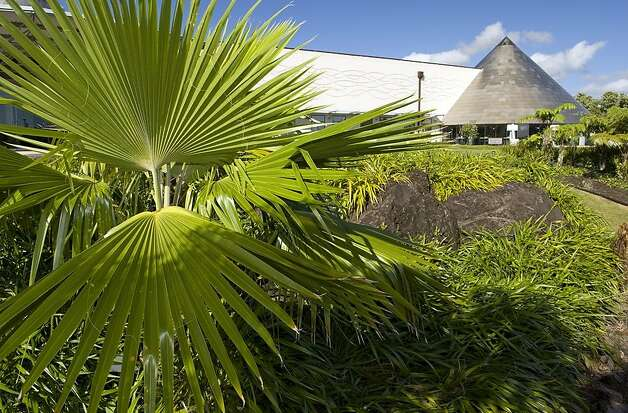 A species of loulu -- the only palm tree indigenous to Hawaii -- grows outside 'Imiloa Astronomy Center in Hilo, where exhibits pair modern science with traditional Hawaiian culture. Photo: 'Imiloa Astronomy Center