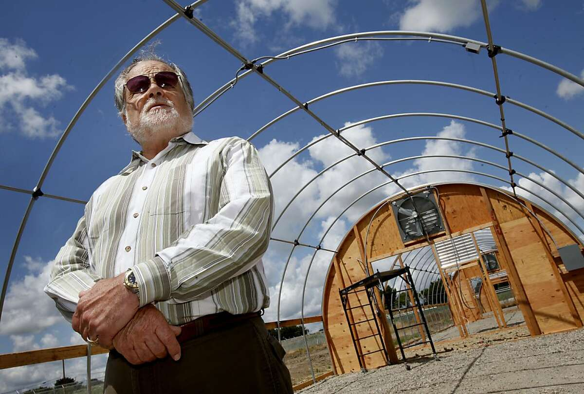 Isleton City Manager Bruce Pope stands in the middle of one of the large greenhouses Monday April 25, 2011 that will house the marijuana. The entire management of the tiny Delta town of Isleton, Calif., has been subpoenaed to testify before a grand jury about their plans to grow marijuana, for medicinal purposes. They hope the pot farm will boost the city budget.