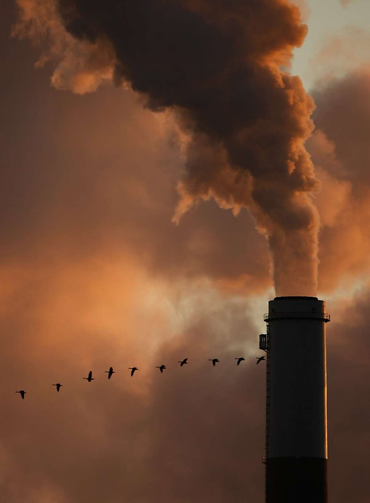 A Jan. 10, 2009 file photo shows a flock of geese flying past a smokestack at the Jeffery Energy Center coal power plant near Emmitt, Kan.