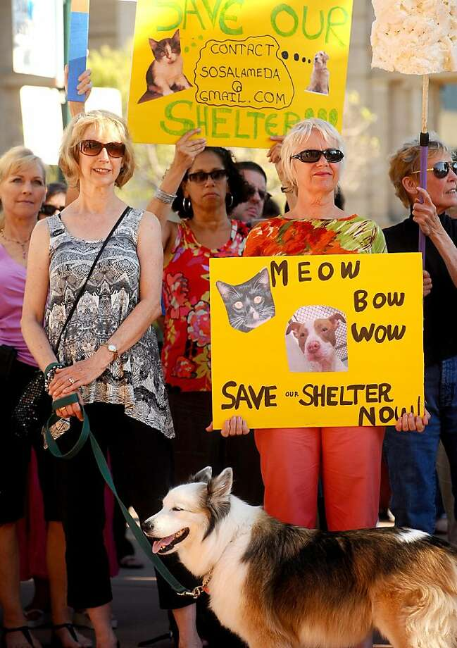 Goldie, a dog rescued from the Alameda Animal Shelter, joins protesters outside City Hall in Alameda, Calif., on Tuesday, June 21, 2011. Budget cuts threaten the facility's operations. At left is Goldie's owner, Linda Garvin, who volunteers at the shelter. Photo: Noah Berger, Special To The Chronicle