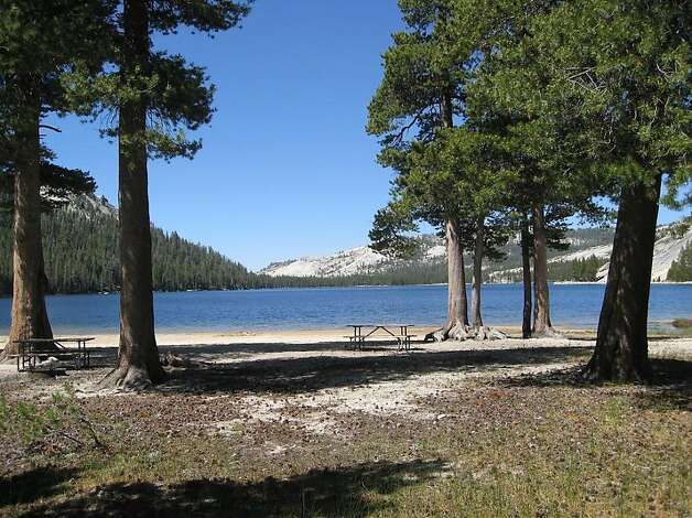 Yosemite Conservancy funding will improve access and restore habitat around Tenaya Lakeês East Beach area. Photo: Mithun, Special To The Chronicle