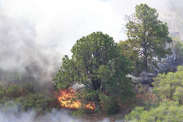 Brush burns along the track fire north of Raton, N.M., Thursday, June 16, 2011, as seen from a KOAT-TV helicopter. Photo: Rick Bowmer, AP