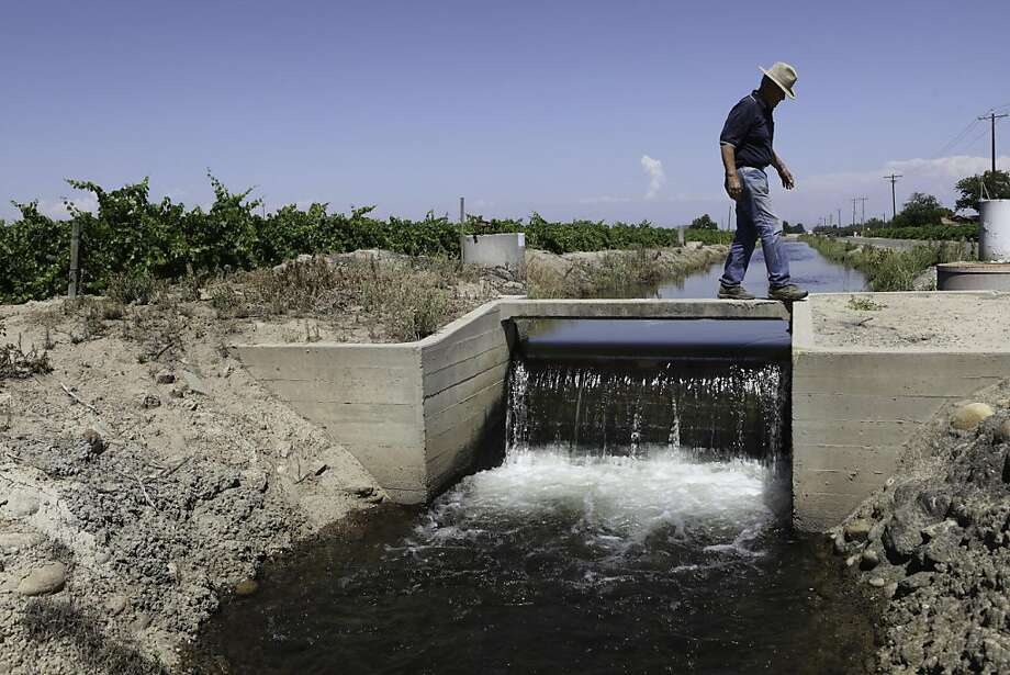 Farmer Bill Chandler walks across an irrigation canal which feeds into his almond orchards, in Selma, Calif., Wednesday, June 15, 2011.  Chandler looks to have a decent crop of almonds with the help of good bee pollination and water.  This year Chandler was able to purchase water which comes from the nearby King's River and is less expensive than pumping from wells as he had to do during the recent drought. Chandler has 160 acres of almonds but diversifies his farming with peaches, plums and nectarines. Photo: Tomas Ovalle, Special To The Chronicle