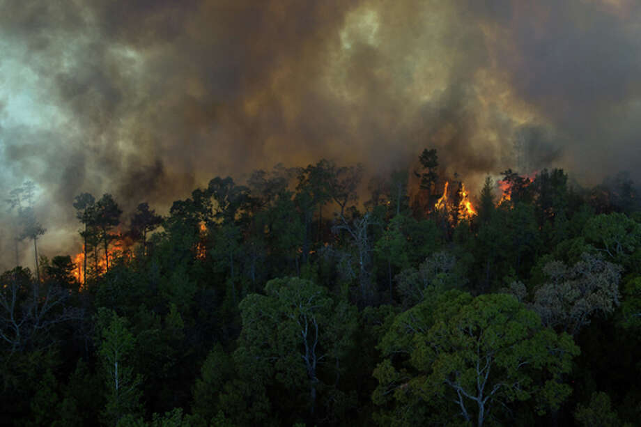 Fire consumes a forest as a wildfire burns on Tuesday, Sept. 6, 2011, near Magnolia, Texas. A large blaze burning in forests in Montgomery, Waller and Grimes counties north and west of Houston contributed to more than 1,000 homes that have been destroyed in at least 57 Texas fires. ( Smiley N. Pool / Houston Chronicle ) Photo: Chronicle
