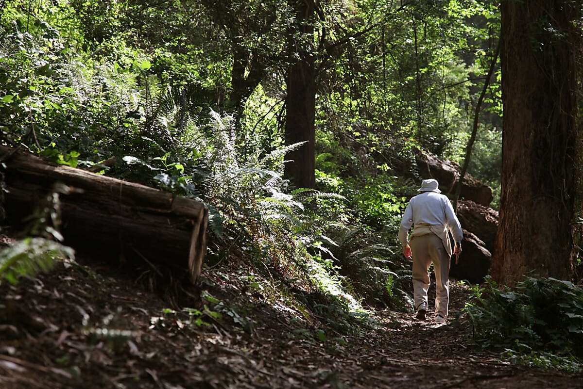 The 86-year-old Ernest Kohn holds his walking stick as he walks up the newly finished portion of hiking trail inside New Interior Greenbelt Park in San Francisco Calif, on Wednesday, June 8, 2011. Kohn who lives in the neighborhood has been well acquainted with the path's surroundings for over 20 years.