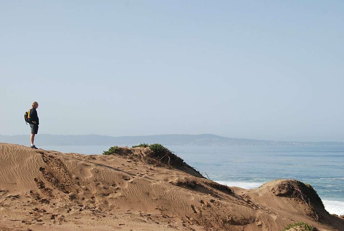 In the dunes overlooking Marina State Beach.