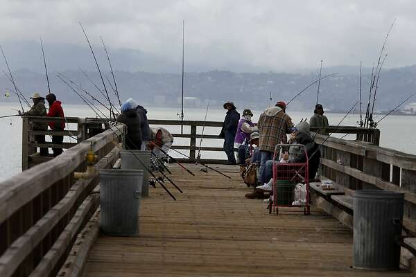 Fisherman crowd the public pier at Candlestick Point. Alden Olmsted has started a campaign to collect a dollar from every Californian to save state parks.  He stopped by Candlestick Point State Recreation Area in San Francisco, Calif. onThursday June 2, 2011.