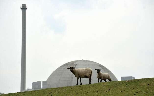 Sheep stand in front of the nuclear power plant Unterweser in Esenshamm, western Germany, on May 30, 2011. Germany's decision to end nuclear power by 2022 gives it 10 years to find alternative sources of energy, but only six months to avoid a winter blackout, say critics of the government move. Chancellor Angela Merkel, in a major policy U-turn, said that all 17 of the country's nuclear reactors would be closed at the latest in 2022, a measure taken for safety reasons in the wake of the disaster at Japan'Fukushima plant. The Unterweser plant was withdrawn from the network due to security reasons after the Fukushima accident. Photo: Carmen Jaspersen, AFP/Getty Images