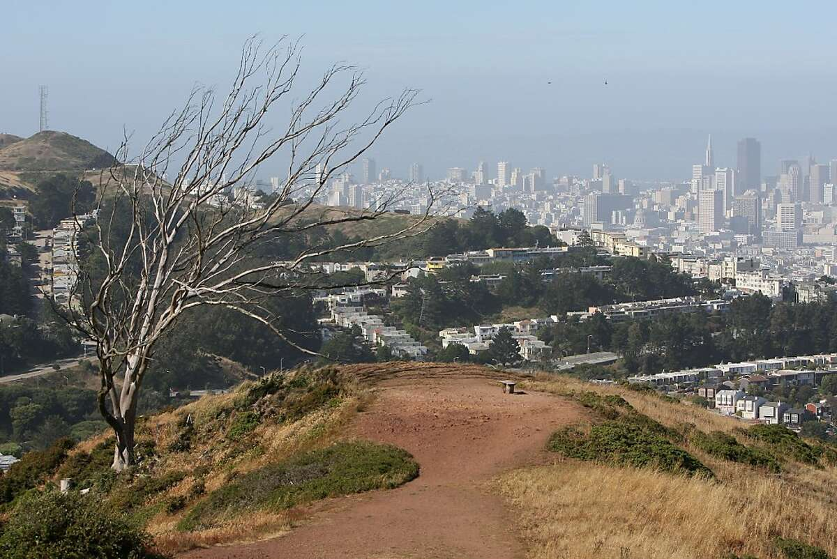 The trail near the summit of Mount Davidson offers sweeping views of the city in San Francisco, Calif., on Saturday, June 20, 2009.