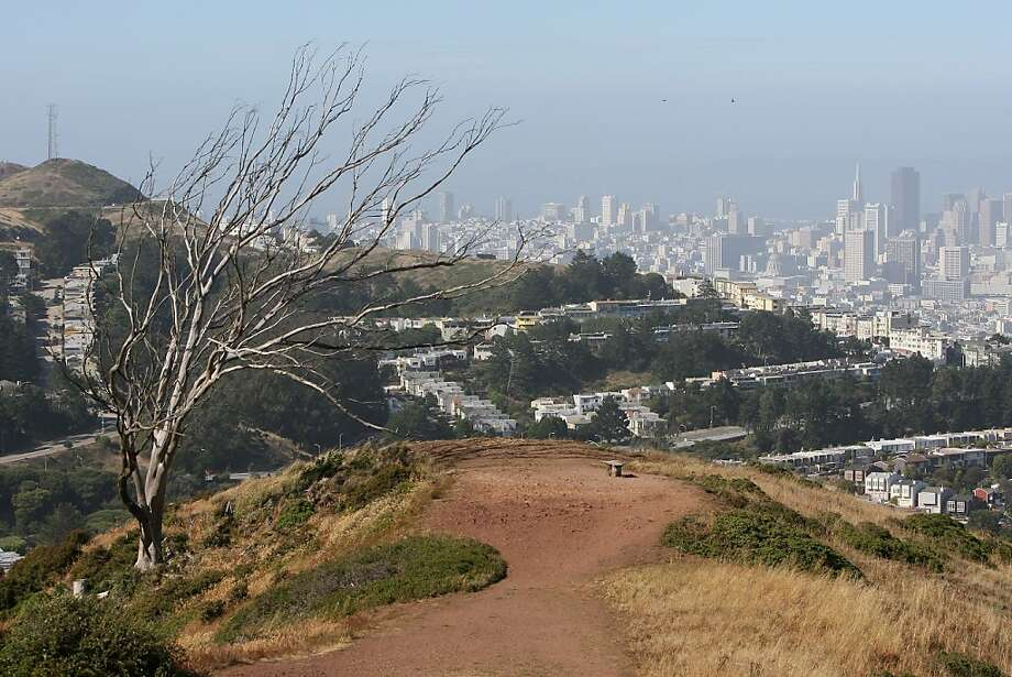 The trail near the summit of Mount Davidson offers sweeping views of the city in San Francisco, Calif., on Saturday, June 20, 2009. Photo: Laura Morton, Special To The Chronicle