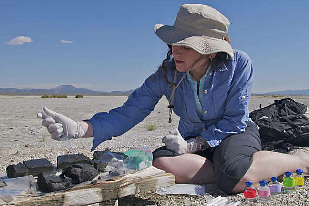 Felisa Wolfe-Simon, a NASA astrobiologist, takes samples from a sediment core she pulled up from the shore of Mono Lake in California. Scientists on Dec. 2, 2010, said that they had trained a bacterium to eat and grow on a diet of arsenic, in place of phosphorus -- one of six elements considered essential for life -- opening up the possibility that organisms could exist elsewhere in the universe or even here on Earth using biochemical powers we have not yet dared to dream about. Photo: Courtesy Science/AAAS