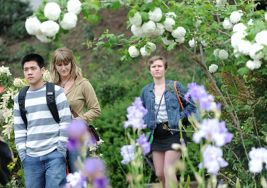 Jonatan Lee (L), Cassandra Greenwood, and Grace Noland take a tour at the Horticulture Department Gardens at the College of San Mateo campus in San Mateo, CA. on Wednesday, May 11, 2011. Against the wishes of students and faculty, the college plans to rip up hundreds of rare plants, including a Dawn Redwood, to put in a parking lot. Photo: Susana Bates, Special To The Chronicle