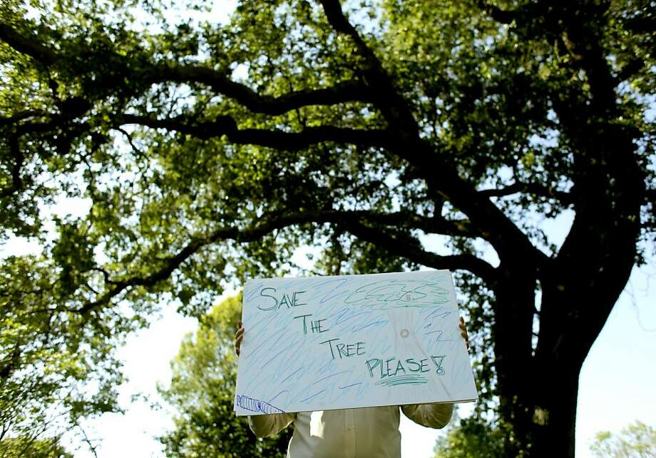 A resident of the neighborhood shows his objection the San Francisco Public Utilities plan to cut down a giant Oak Tree, to make way for a new water pipe, Tuesday May 24, 2011, in Fair Oaks, Calif. Photo: Lacy Atkins, The Chronicle