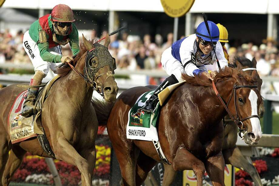 Shackleford, front right, ridden by Jesus Castanon, moves to the finish line to win the 36th Preakness Stakes horse race at Pimlico Race Course, Saturday, May 21, 2011, in Baltimore. Animal Kingdom, left, ridden by John Velazquez, took second place. Photo: Garry Jones, AP