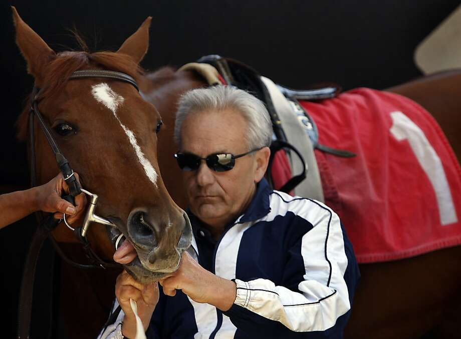 Trainer Jerry Hollendorfer preps U R All That I Am, who finished in second place in the first race at Golden Gate Fields, in Berkeley, Calif., on Friday, April 24, 2009. Another one of Hollendorfer's horses, Chocolate Candy, is entered in this year's Kentucky Derby. Photo: Paul Chinn, The Chronicle