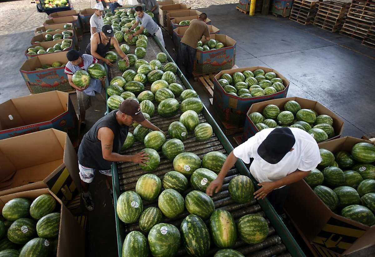 Warehouse workers load watermelons for shipping after they are packed with HarvestMark tracking labels at the Van Groningen & Sons produce company in Manteca, Calif., on Tuesday, July 28, 2009. The new bar code system helps consumers keep track of where and when produce was grown and processed in case of an E. coli outbreak.