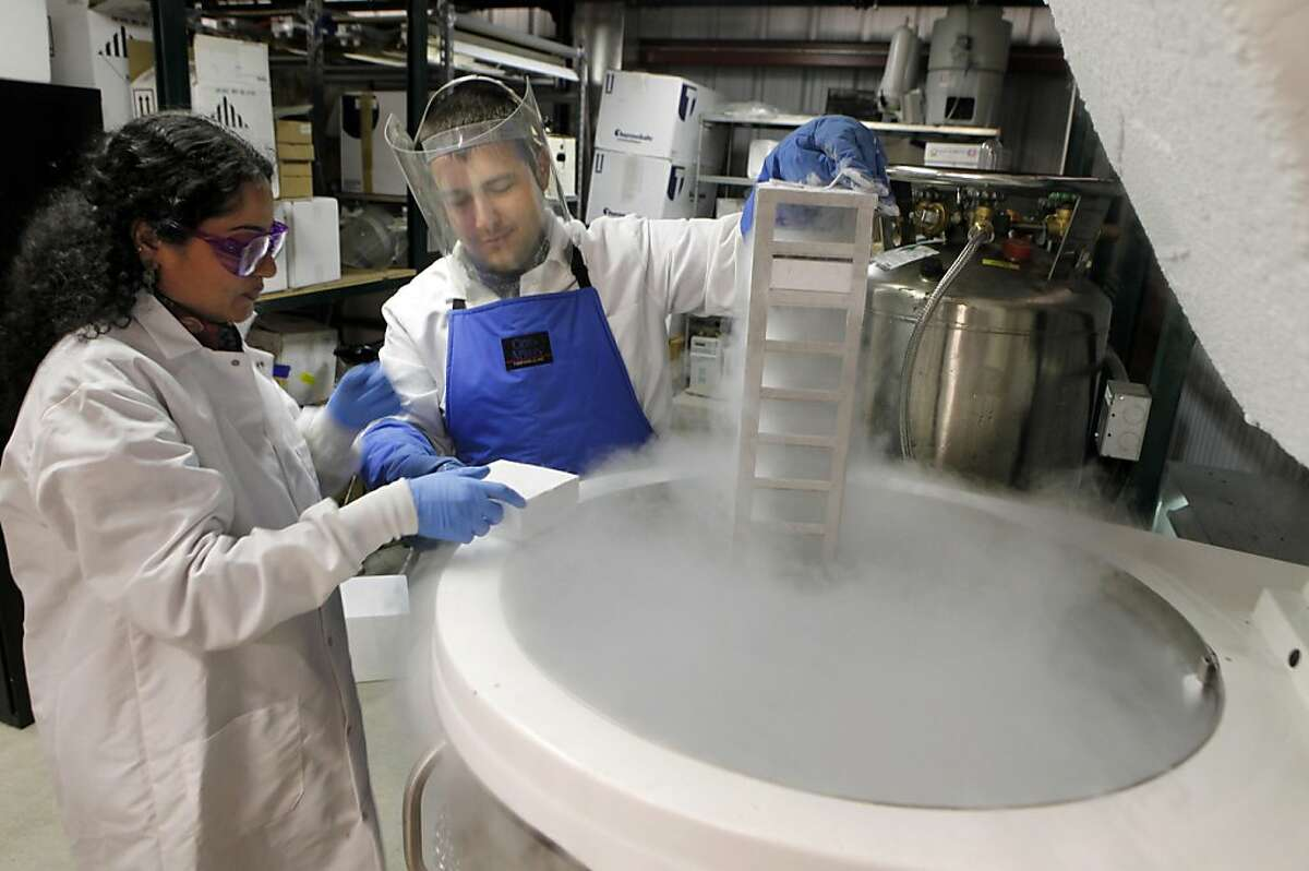 Subha Venkat and Paul Yousefi, two researchers with the University of California school of Public Health Laboratory, pull blood samples from a liquid nitrogen tank Wednesday, May 11, 2011. If the Lawrence Berkeley Laboratory decides to relocate some of their research labs to Richmond they would be entering a friendly environment that's already in place.