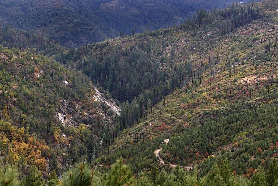 Cherry Creek flows through a gorge located both in Stanislaus National Forest (left) and on land owned and operated by Sierra Pacific Industries (lower right) near Sonora, Calif., on Wednesday, Oct. 14, 2009. The company plans to sell off carbon offsets generated by its forests to power companies and investors. Photo: Paul Chinn, The Chronicle