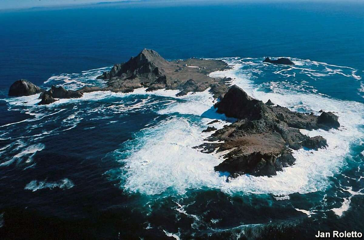 An aerial view of the Farallones Islands